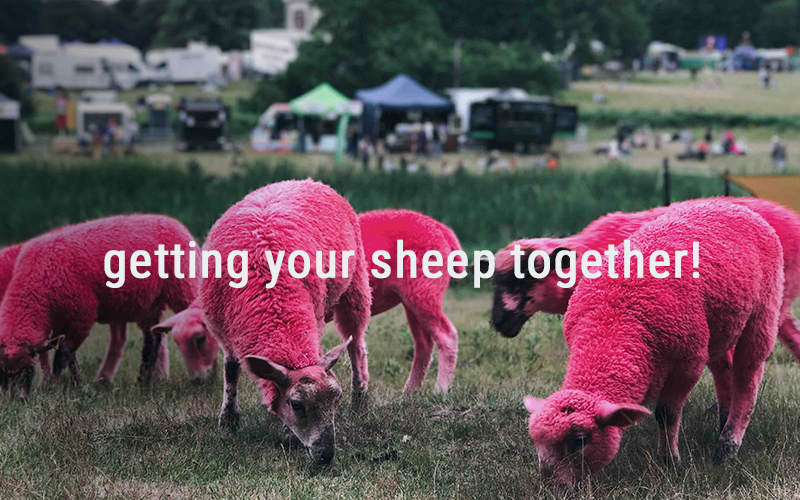 Get Your Sheep Together